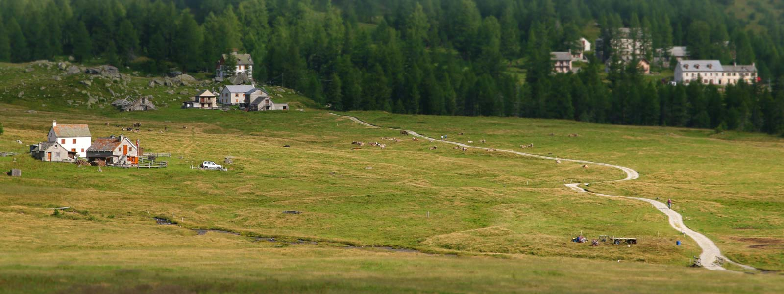 Prati-Alpe-Veglia